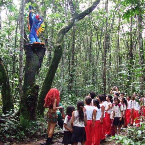 Teatro de Floresta 3